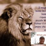 Caccia al bracconiere che ha ucciso Cecil il Leone