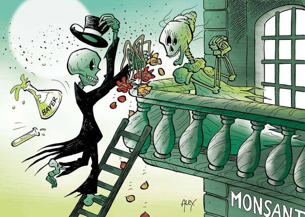 Bayer-Monsanto: matrimonio all'inferno